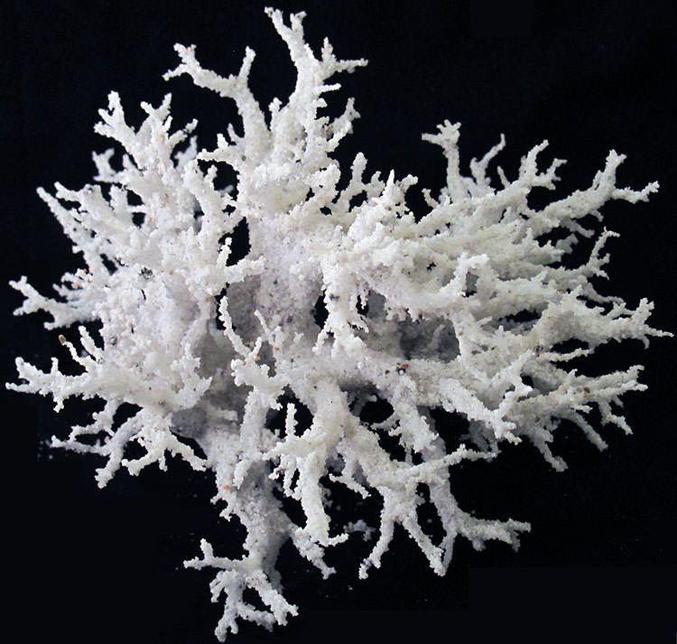 artificial fulgurite branching white