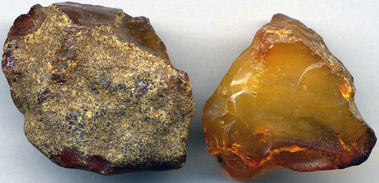 raw amber resinite how to tell a real gemstone
