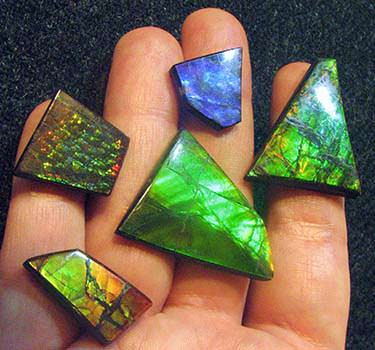 Several ammolite gemstones