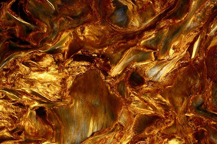 Golden pietersite closeup