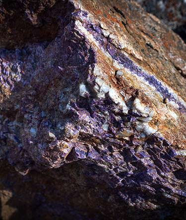 Rock with purple charoite vein